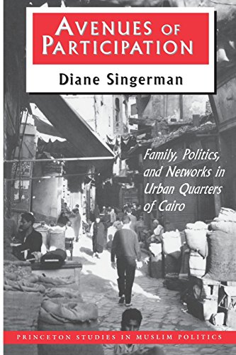 Avenues of Participation : Family, Politics, and Networks in Urban Quarters of Cairo - Diane Singerman