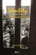 Identity in Modern Society: A Social Psychological Perspective