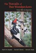The Travails of Two Woodpeckers: Ivory-Bills & Imperials
