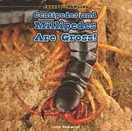 Centipedes and Millipedes Are Gross!