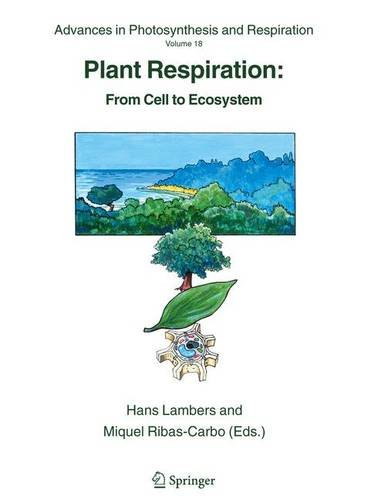 Plant Respiration: From Cell to Ecosystem (Advances in Photosynthesis and Respiration) - Hans Lambers; Universitat Illes Balears