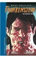 Frankenstein (Puffin Graphics) (Graphic Novel Classics) - Mary Wollstonecraft Shelley