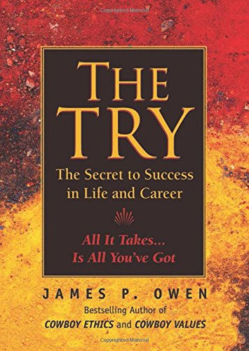 The Try: Reclaiming the American Dream - James P. Owen
