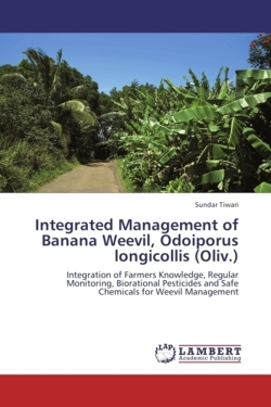 Integrated Management of Banana  Weevil, Odoiporus longicollis (Oliv.)