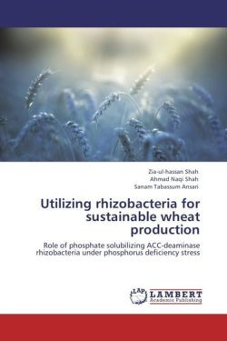 Utilizing rhizobacteria for sustainable wheat production - Shah, Zia-ul-hassan / Shah, Ahmad Naqi / Ansari, Sanam Tabassum