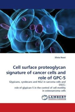 Cell surface proteoglycan signature of cancer cells and role of GPC-5 - Rossi, Silvia