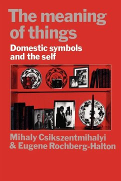 The Meaning of Things - Csikszentmihalyi, Mihaly Halton, Eugene