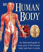 The Human Body - Baggaley, Ann / Hamilton, Jill / Perlmutter, Jane