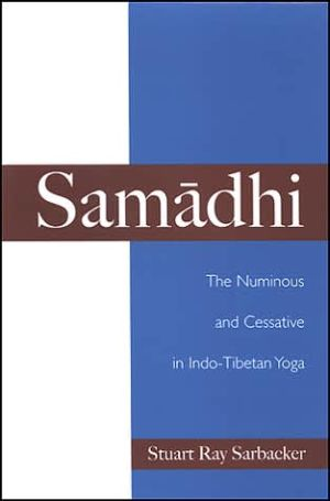 Samadhi: The Numinous and Cessative in Indo-Tibetan Yoga - Stuart Ray Sarbacker, Harold Coward (Editor)