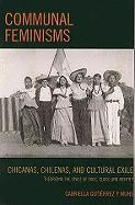 Communal Feminisms: Chicanas, Chilenas, and Cultural Exile; Theorizing the Space of Exile, Class, and Identity