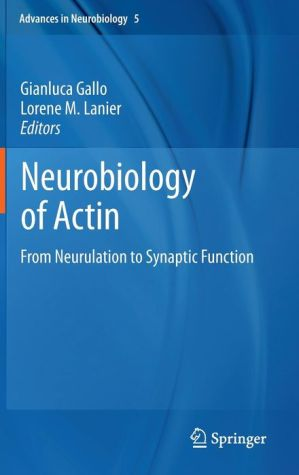 Neurobiology of Actin: From Neurulation to Synaptic Function - Gianluca Gallo, Lorene M Lanier