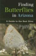 Finding Butterflies in Arizona: A Guide to the Best Sites