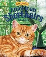 American Shorthairs: Pioneers - Rudolph, Jessica