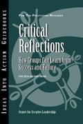 Critical Reflections: How Groups Can Learn from Success and Failure - Ernst, Chris