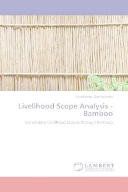 Livelihood Scope Analysis -Bamboo