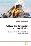 Fluidized Bed Combustion and Identification