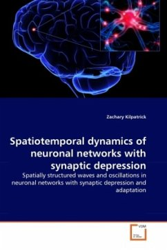 Spatiotemporal dynamics of neuronal networks with synaptic depression - Kilpatrick, Zachary