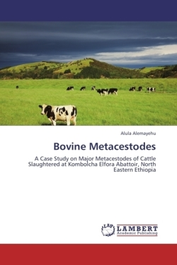 Bovine Metacestodes: A Case Study on Major Metacestodes of Cattle Slaughtered at Kombolcha Elfora Abattoir, North Eastern Ethiopia