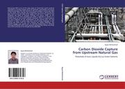 Muhammad, Ayyaz: Carbon Dioxide Capture from Upstream Natural Gas