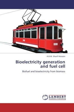 Bioelectricity generation and fuel cell