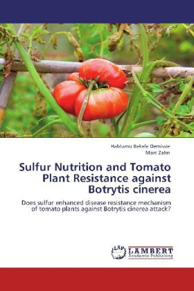 Sulfur Nutrition and Tomato Plant Resistance against Botrytis cinerea - Does sulfur enhanced disease resistance mechanism of tomato plants against Botrytis cinerea attack?