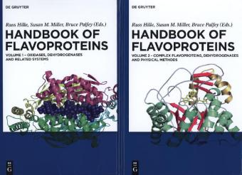 Handbook of Flavoproteins, 2 Vols. - Oxidases, Dehydrogenases and Related Systems Complex Flavoproteins, Dehydrogenases and Physical Methods