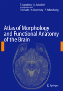 Di Salle, F.;Duvernoy, H.;Rabischong, P.: Atlas of Morphology and Functional Anatomy of the Brain