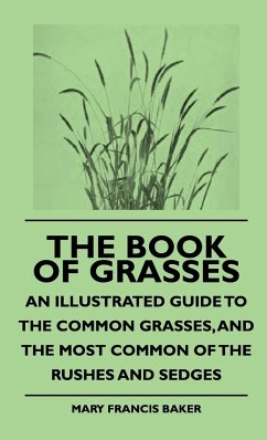 The Book of Grasses - An Illustrated Guide to the Common Grasses, and the Most Common of the Rushes and Sedges - Baker, Mary Francis Gibson, William