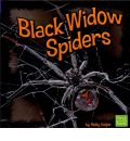 Black Widow Spiders - Molly Kolpin