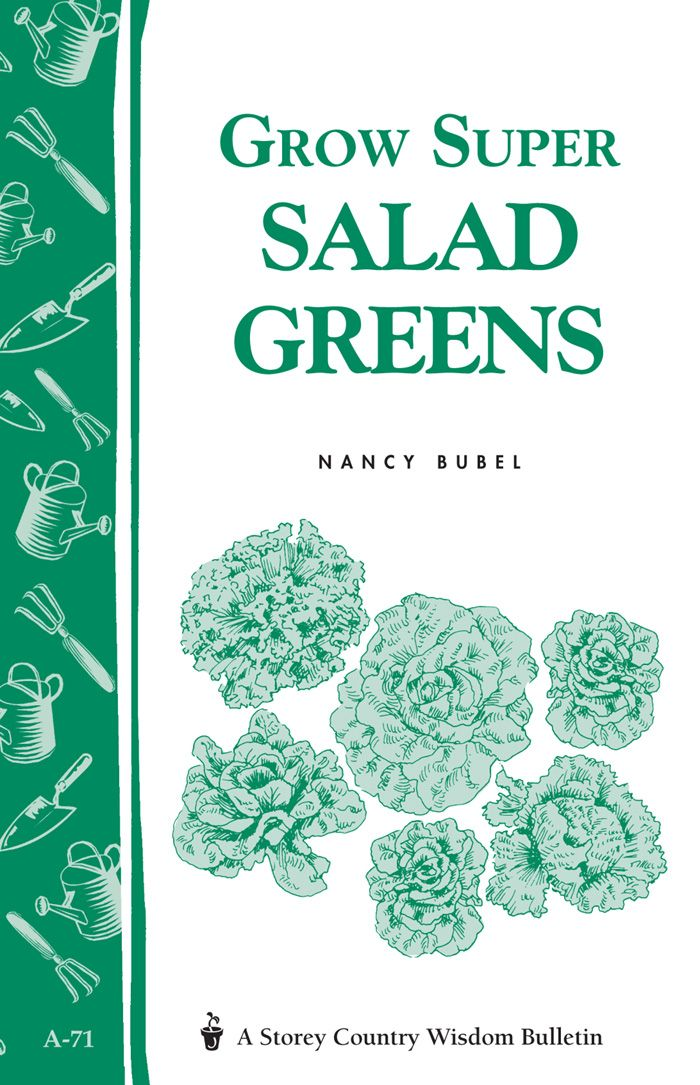 Grow Super Salad Greens: Storey's Country Wisdom Bulletin A-71 - Storey Publishing, LLC