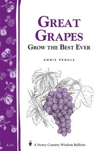 Great Grapes: Grow The Best Ever / Storey's Country Wisdom Bulletin A-53 - Annie Proulx