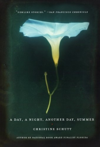 A Day, a Night, Another Day, Summer - Christine Schutt