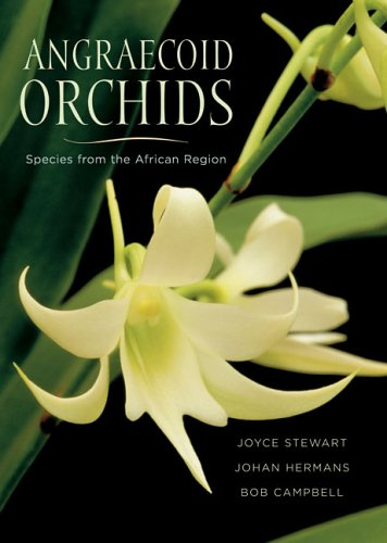 Angraecoid Orchids: Species from the African Region - Joyce Stewart; Johan Hermans; Bob Campbell