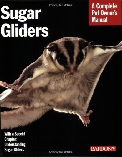 Sugar Gliders - Caroline Wightman