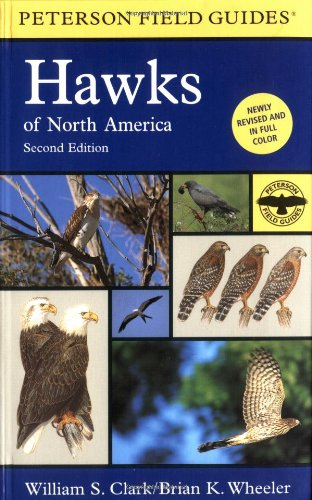 A Field Guide to Hawks of North America (Peterson Field Guides) - William S. Clark, Brian K. Wheeler