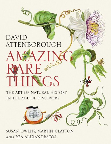 Amazing Rare Things: The Art of Natural History in the Age of Discovery - Martin Clayton; Susan Owens; Rea Alexandratos
