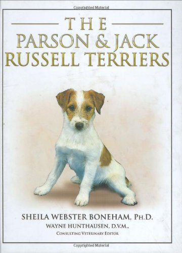 Parson and Jack Russell Terriers - Shelia Webster Boneham