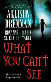 What You Can't See - Allison Brennan, Roxanne St. Claire, Karin Tabke