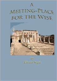 A Meeting-Place for the Wise: More Excursions into the Jewish Past and Present - Eliezer Segal