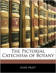 The Pictorial Catechism Of Botany - Anne Pratt