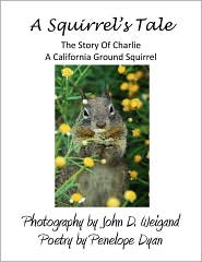 Squirrel's Tale, The Story Of Charlie, A California Ground Squirrel - John D Weigand
