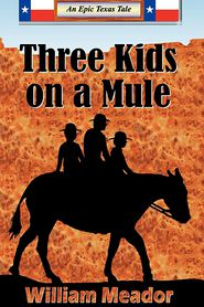Three Kids On A Mule - William Meador