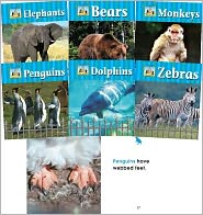 Zoo Animals - Carey Molter