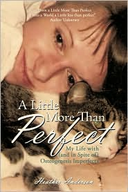 A Little More Than Perfect - Heather Anderson