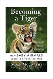 Becoming a Tiger: How Baby Animals Learn to Live in the Wild - McCarthy, Susan