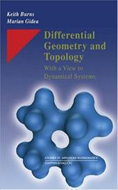Differential Geometry and Topology: With a View to Dynamical Systems - Gidea, Marian / Burns, Keith Howard / Burns, Burns