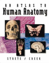 An Atlas To Human Anatomy by Strete/Creek - Dennis Strete
