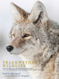 Yellowstone Wildlife: Ecology and Natural History of the Greater Yellowstone Ecosystem - Paul A. Johnsgard