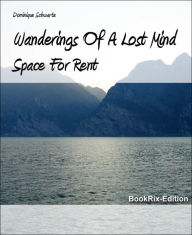 Wanderings Of A Lost Mind: Space For Rent - Dominique Schwartz