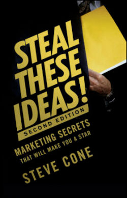 Steal These Ideas!: Marketing Secrets That Will Make You a Star (Bloomberg)